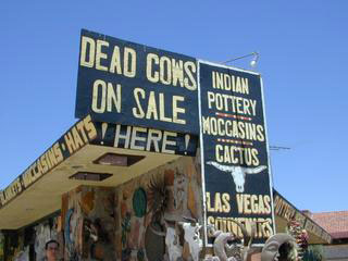 Dead Cows??!