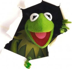 Kermit of Success