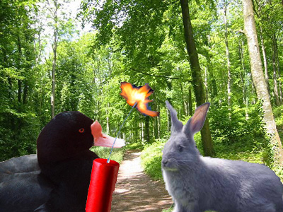 Live Action Looney Tunes