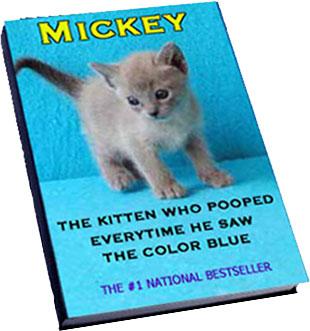 Mikey the Kitten